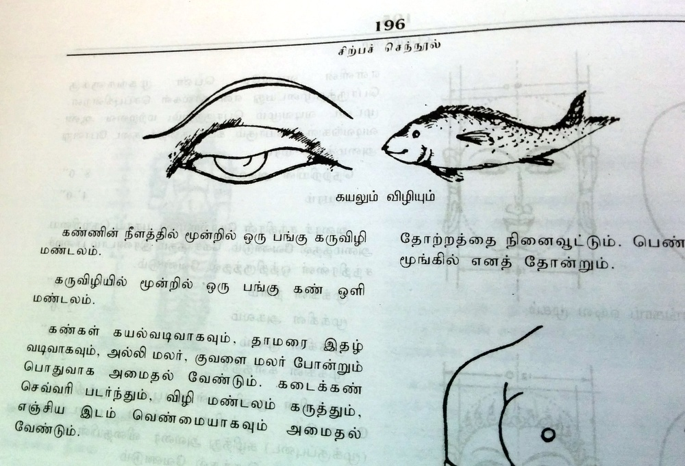 So an eye is shaped like a fish?